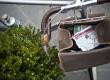 L'Eroica - Gaiole in Chianti - SI